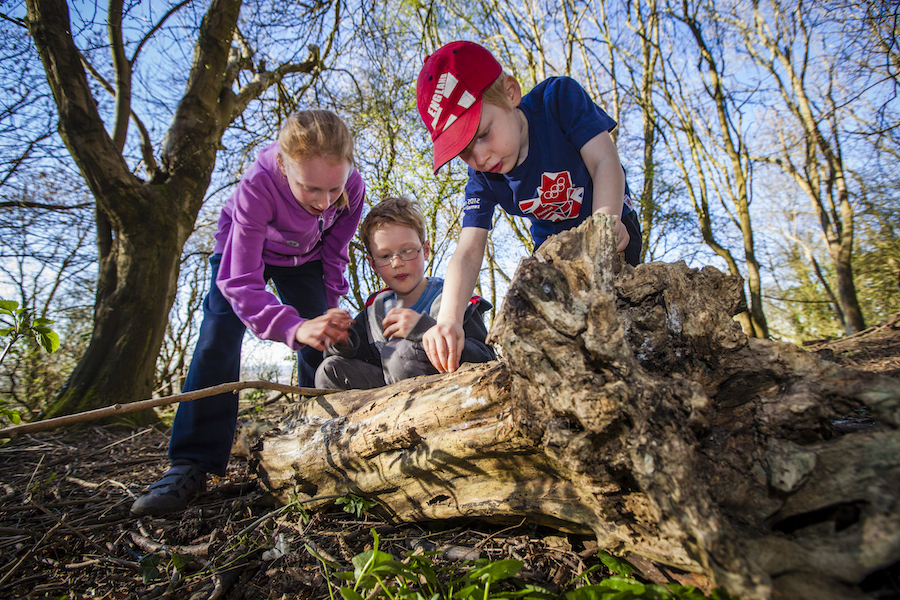 Robinswood Hill Event - Gloucestershire Wildlife Trust