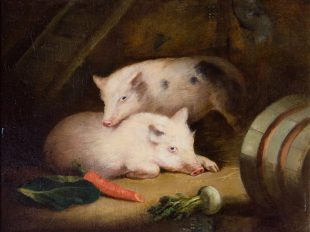 Painting of pigs